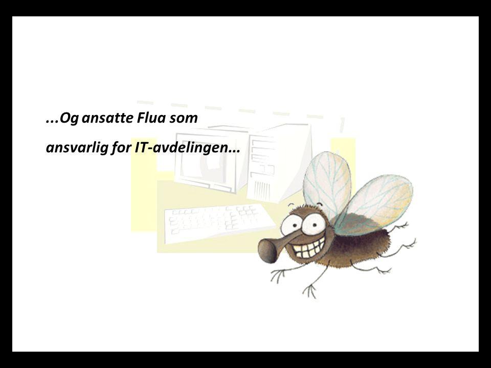 ...Og ansatte Flua som ansvarlig for IT-avdelingen...