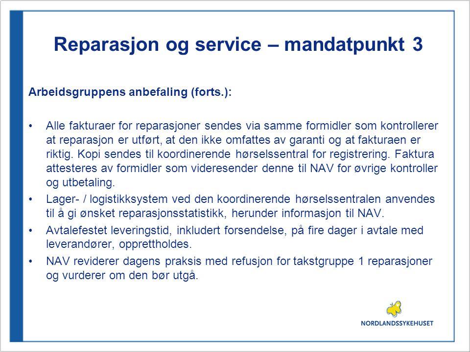 Reparasjon og service – mandatpunkt 3