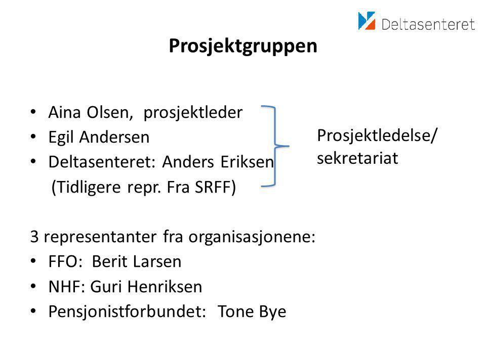 Prosjektgruppen Aina Olsen, prosjektleder Egil Andersen
