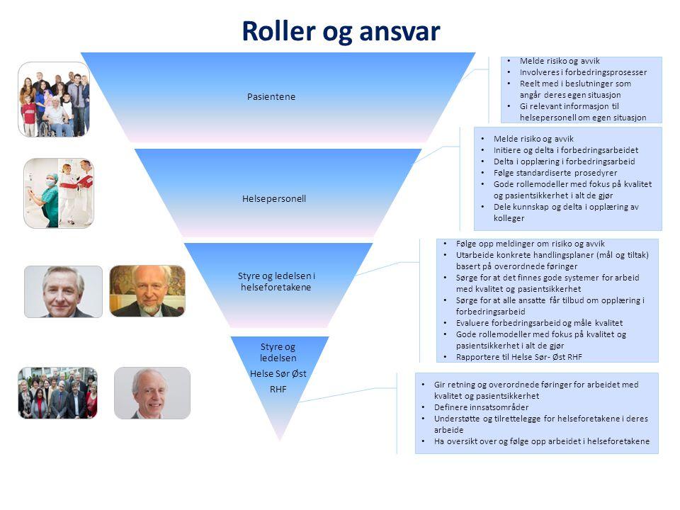 Styre og ledelsen i helseforetakene