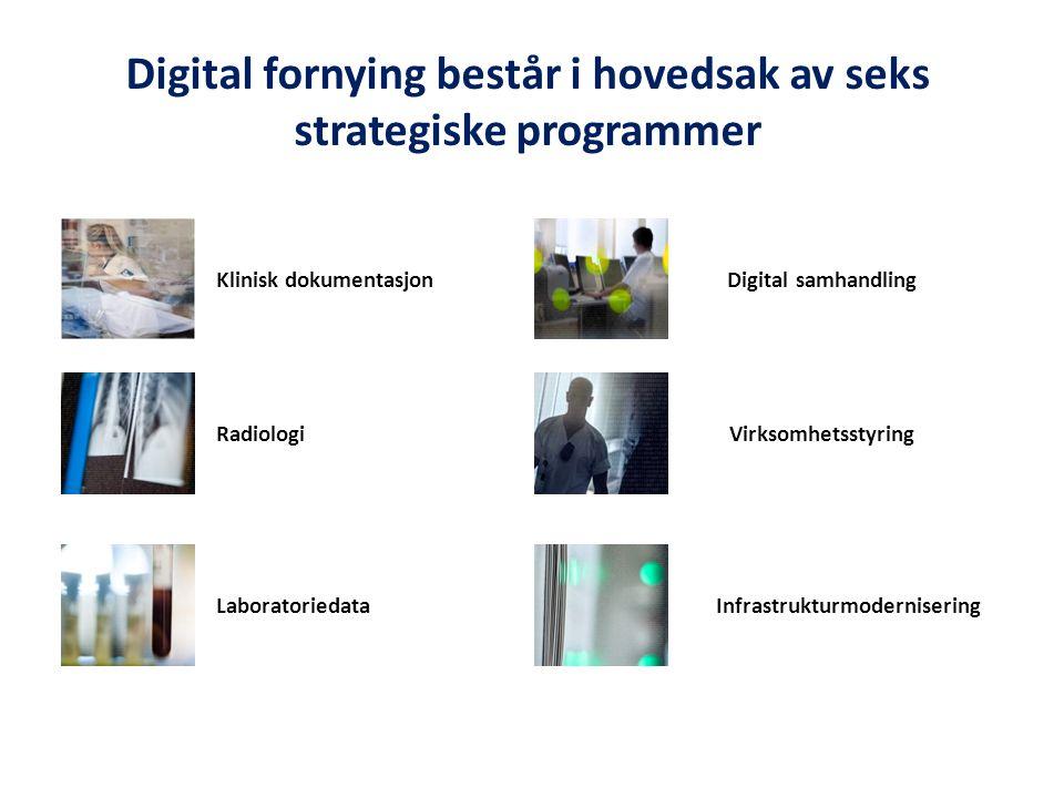 Digital fornying består i hovedsak av seks strategiske programmer