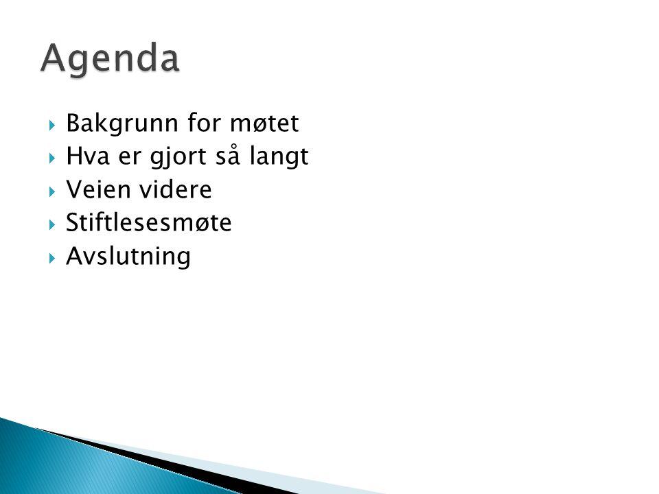 Agenda Bakgrunn for møtet Hva er gjort så langt Veien videre
