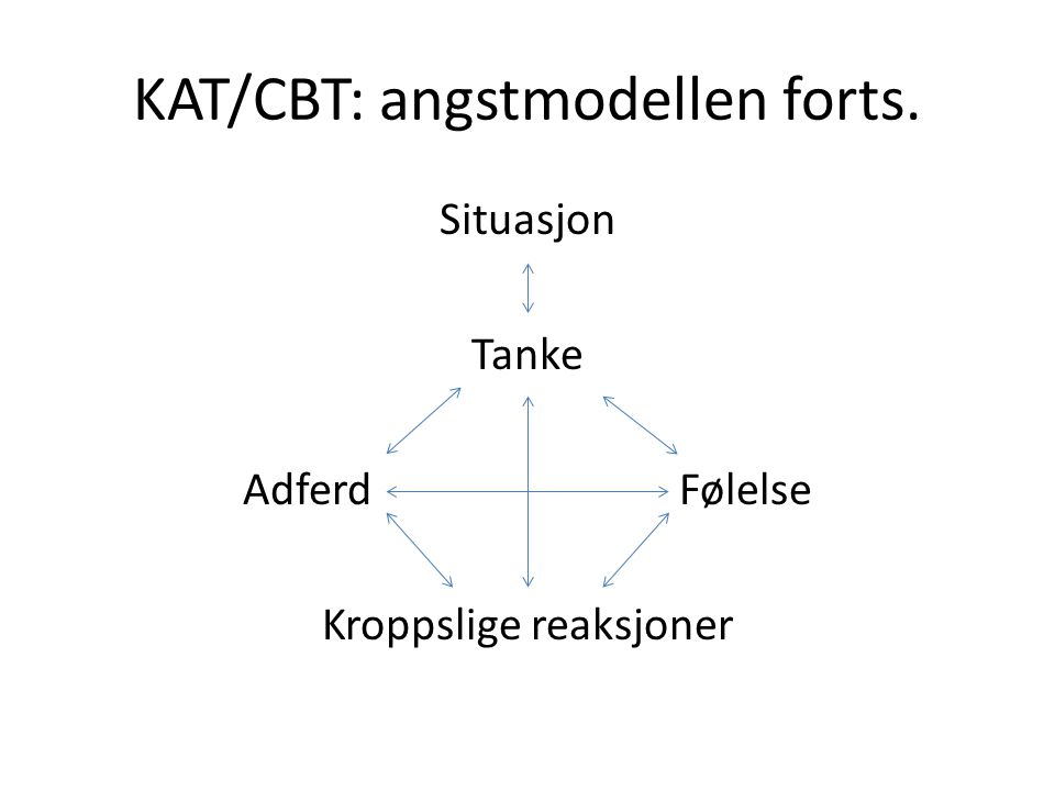 KAT/CBT: angstmodellen forts.