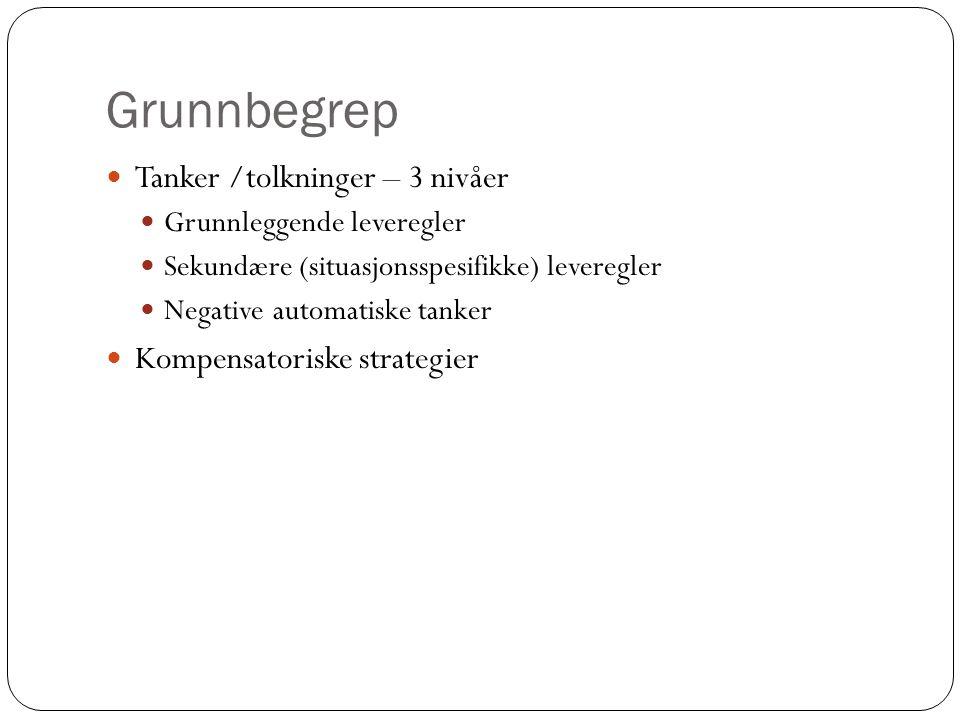 Grunnbegrep Tanker /tolkninger – 3 nivåer Kompensatoriske strategier
