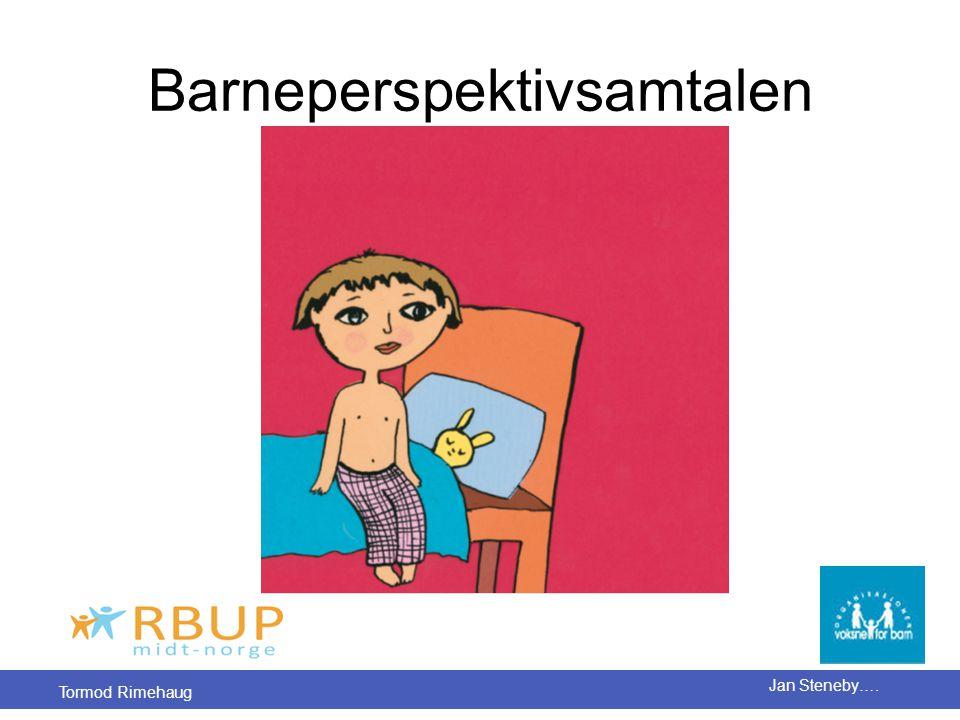 Barneperspektivsamtalen