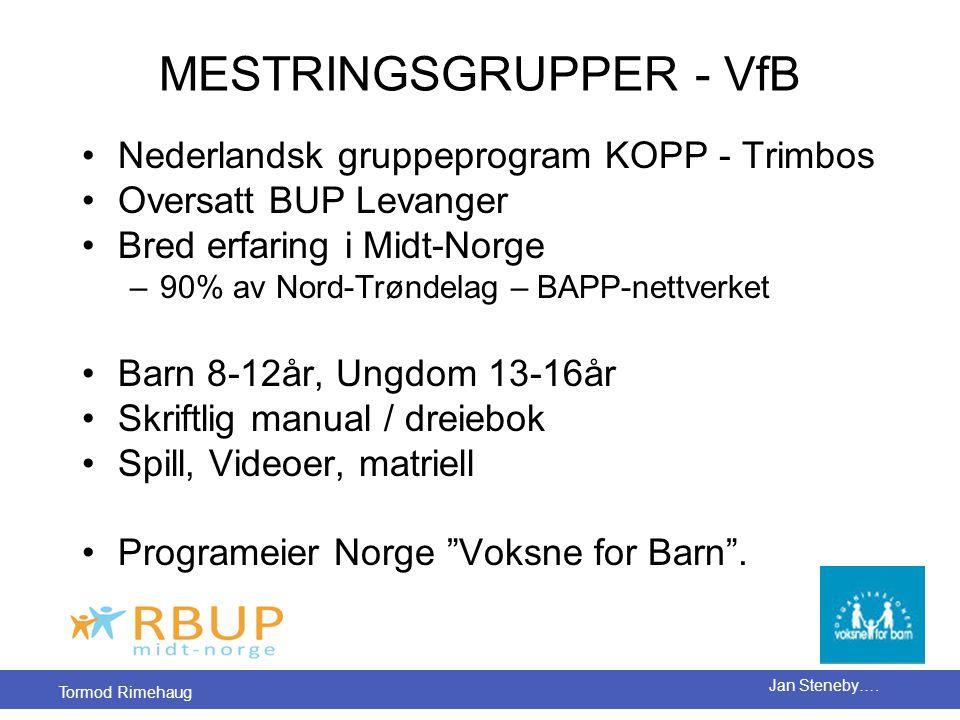 MESTRINGSGRUPPER - VfB