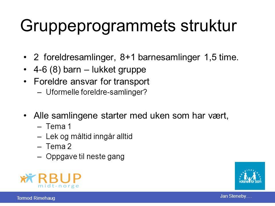 Gruppeprogrammets struktur