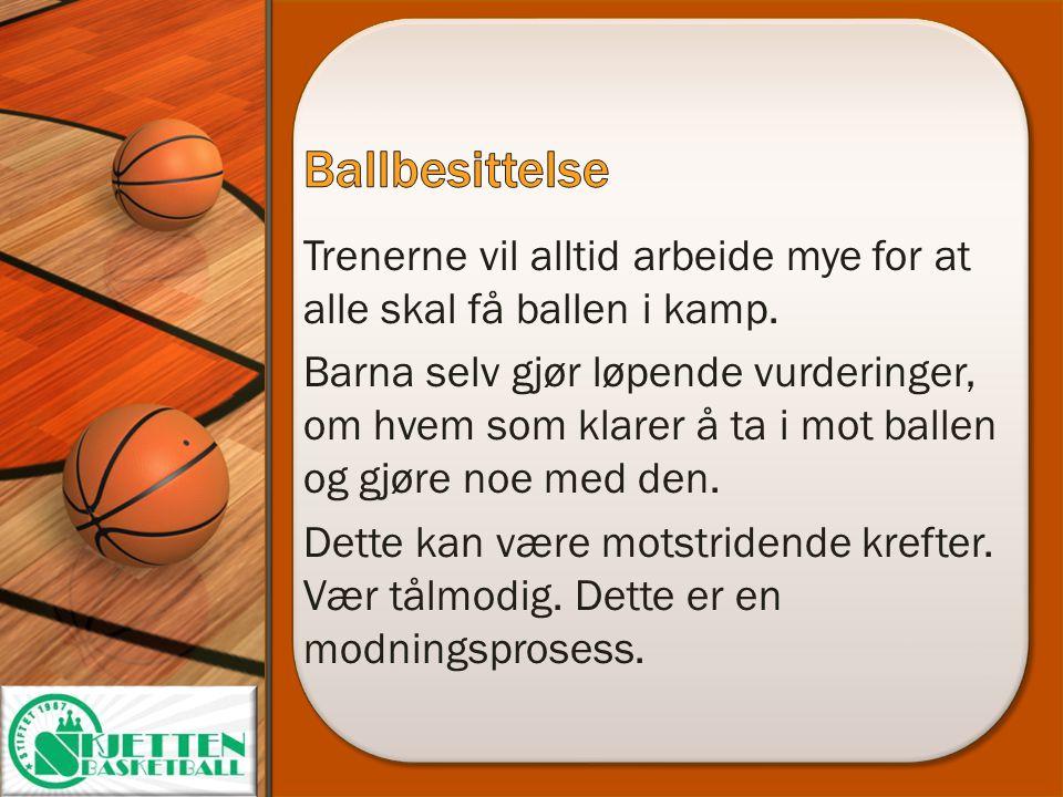 Ballbesittelse