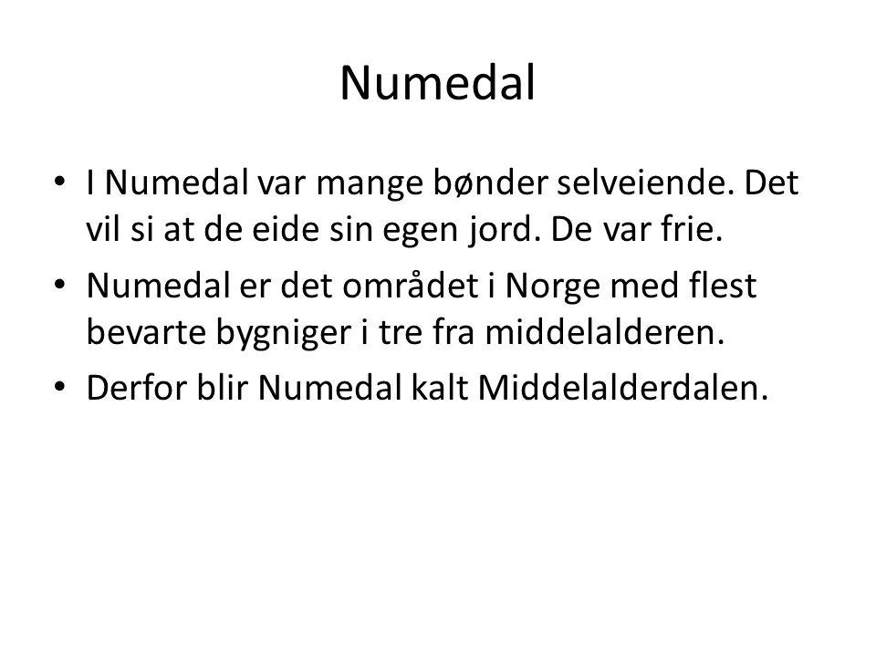 Numedal I Numedal var mange bønder selveiende. Det vil si at de eide sin egen jord. De var frie.
