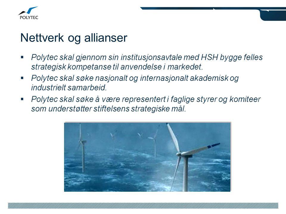 Nettverk og allianser Polytec skal gjennom sin institusjonsavtale med HSH bygge felles strategisk kompetanse til anvendelse i markedet.