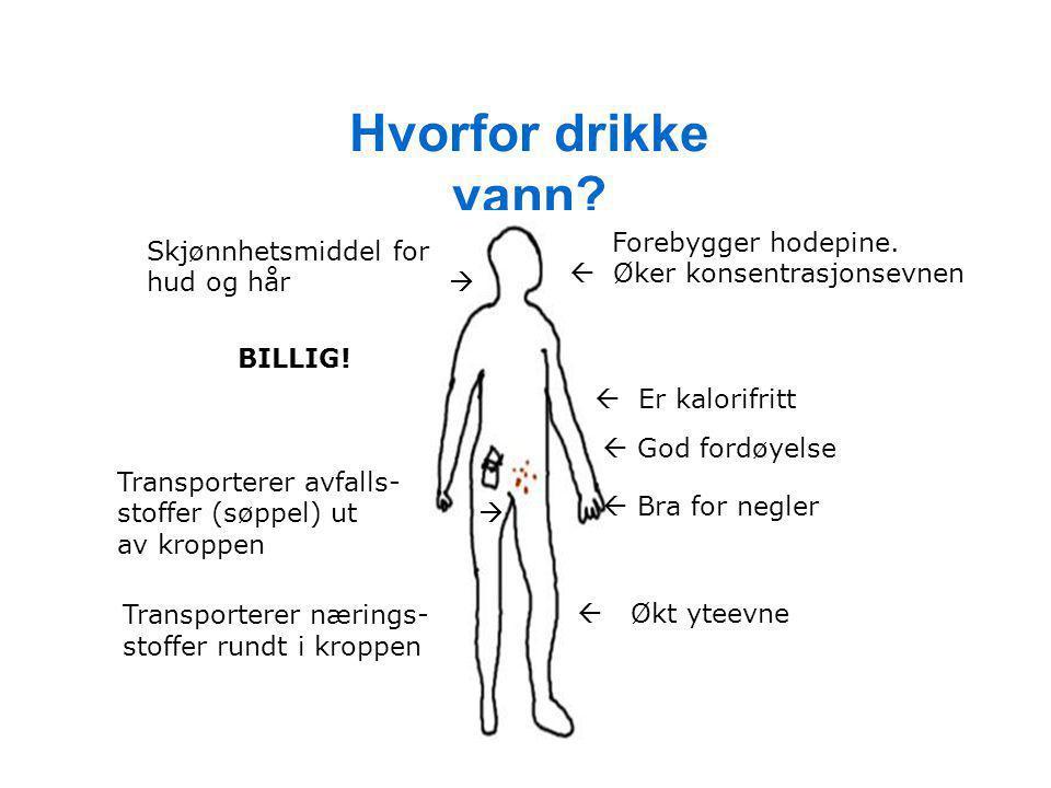 Hvorfor drikke vann  Øker konsentrasjonsevnen