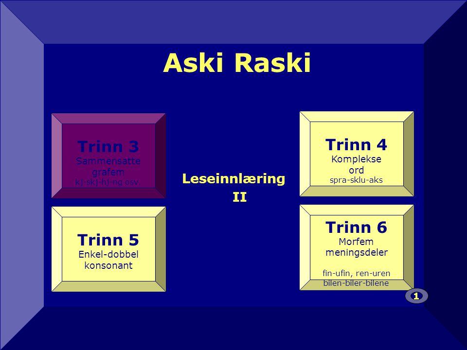 Aski Raski 12 Trinn 4 Trinn 3 Trinn 6 Trinn 5 Leseinnlæring II