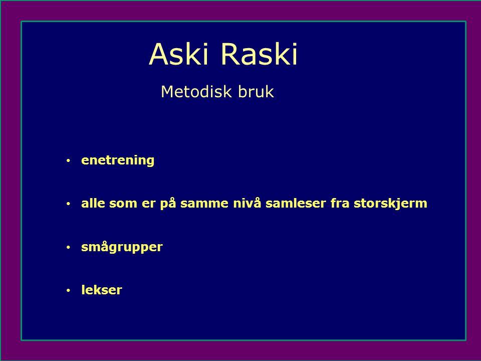 Aski Raski Metodisk bruk enetrening