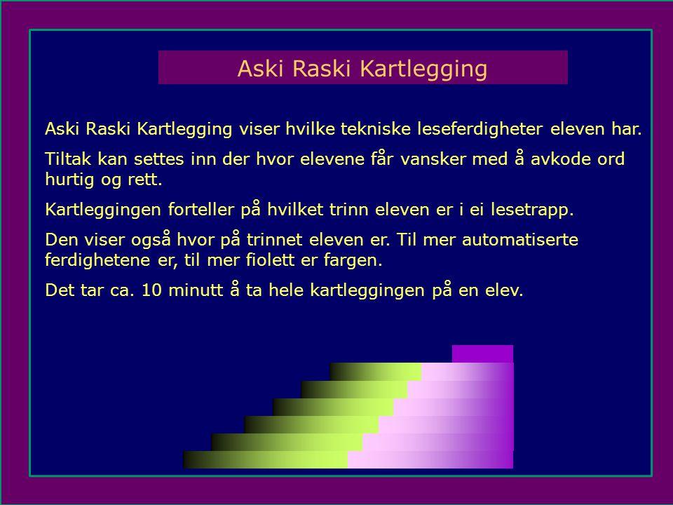 Aski Raski Kartlegging
