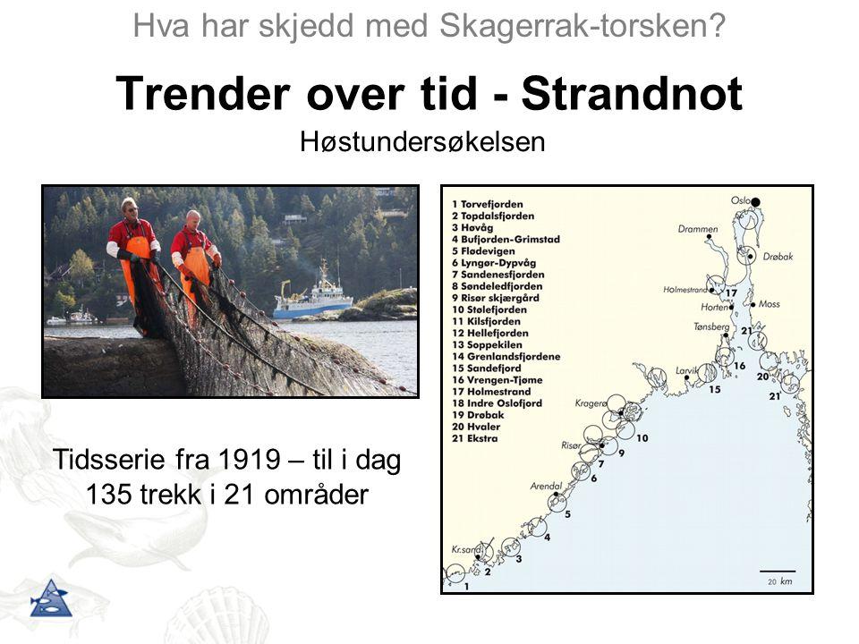 Trender over tid - Strandnot