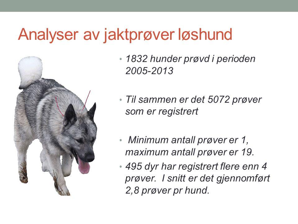 Analyser av jaktprøver løshund