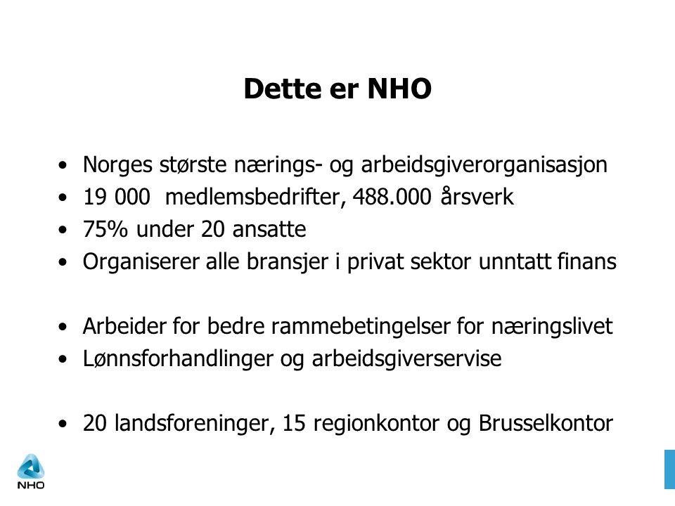 Dette er NHO Norges største nærings- og arbeidsgiverorganisasjon