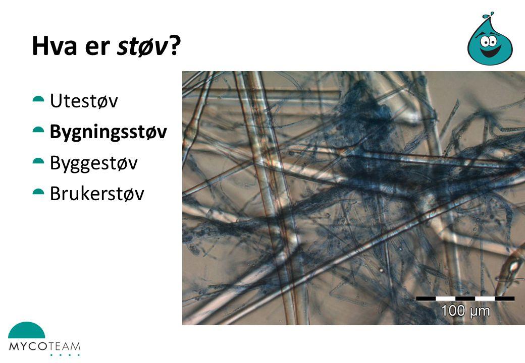 Hva er støv Utestøv Bygningsstøv Byggestøv Brukerstøv