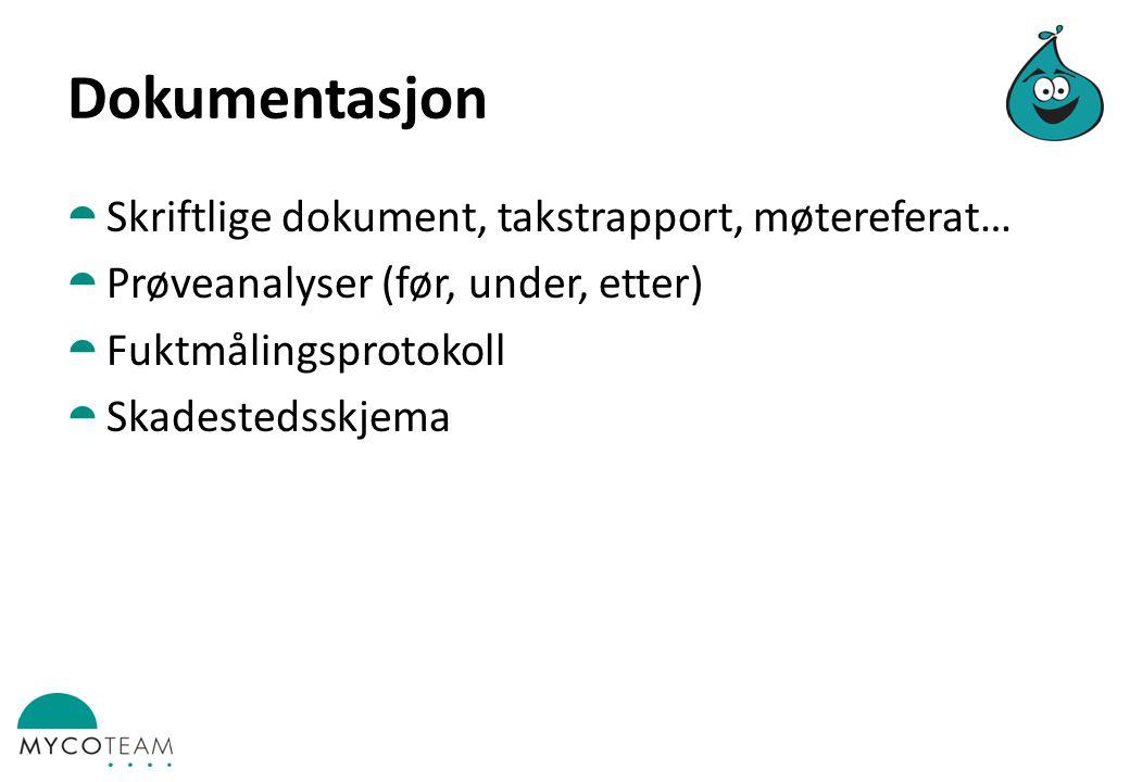 Dokumentasjon Skriftlige dokument, takstrapport, møtereferat…