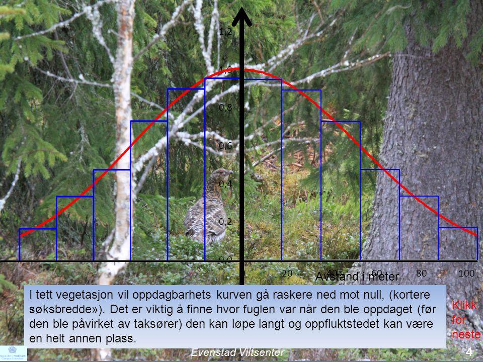 I tett vegetasjon vil oppdagbarhets kurven gå raskere ned mot null, (kortere søksbredde»). Det er viktig å finne hvor fuglen var når den ble oppdaget (før den ble påvirket av taksører) den kan løpe langt og oppfluktstedet kan være en helt annen plass.