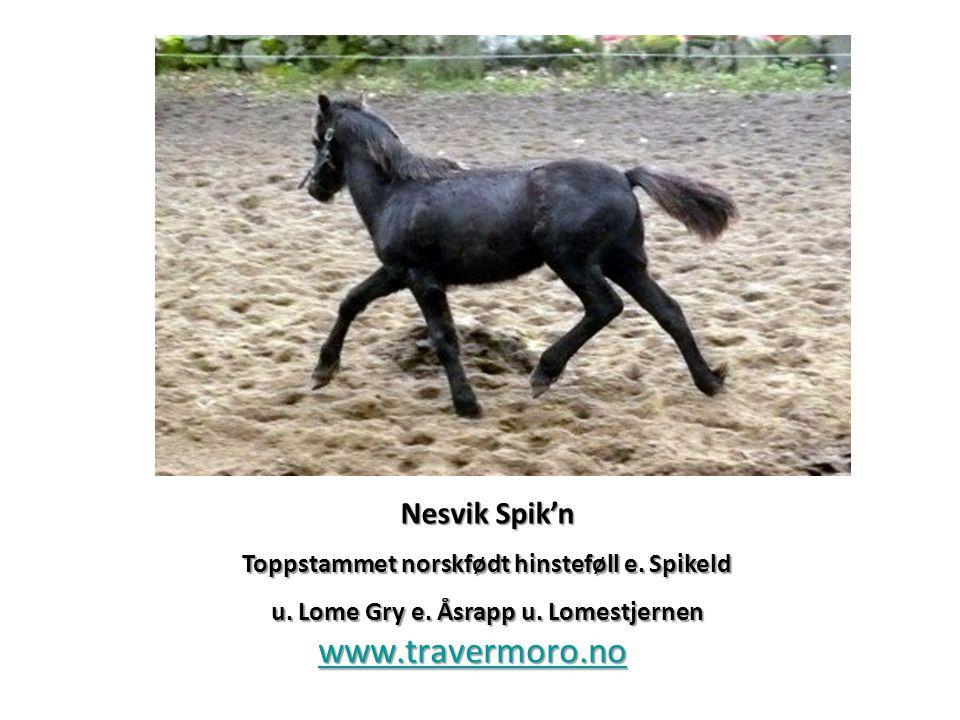www.travermoro.no Nesvik Spik'n