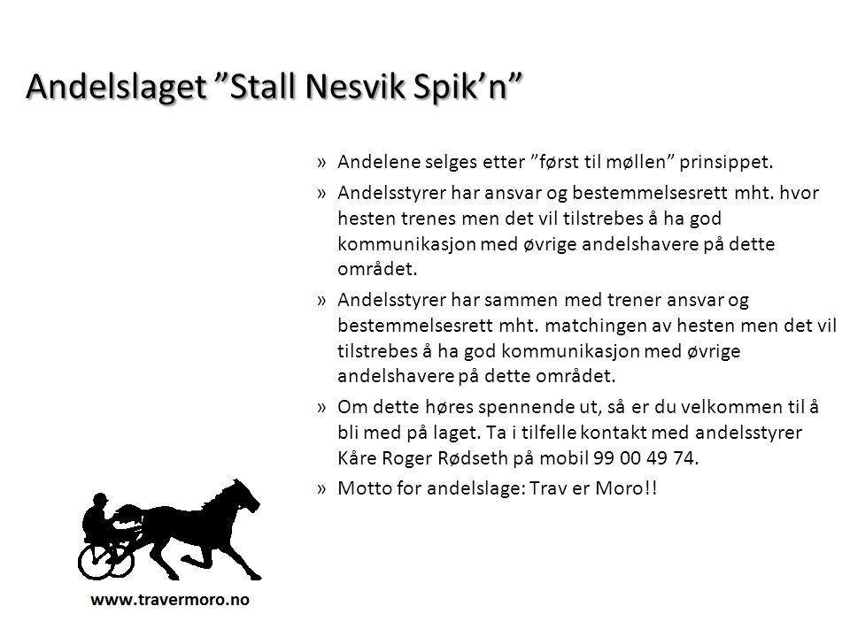 Andelslaget Stall Nesvik Spik'n