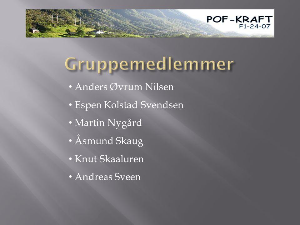 Gruppemedlemmer Anders Øvrum Nilsen Espen Kolstad Svendsen