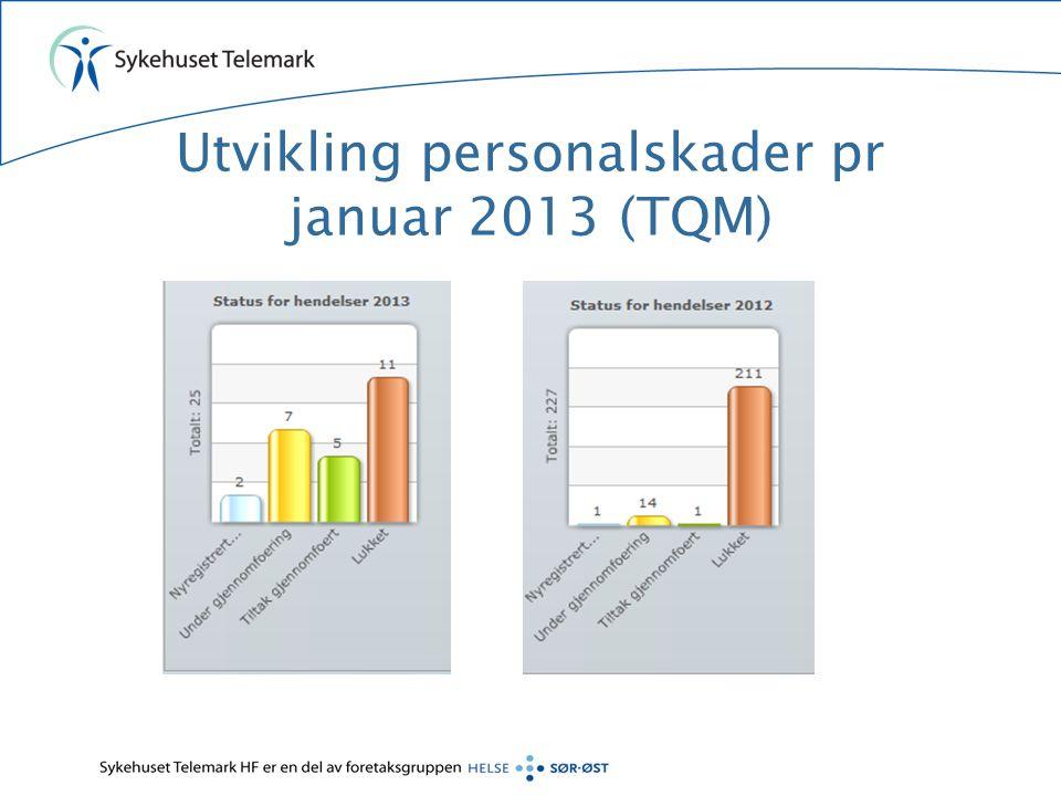 Utvikling personalskader pr januar 2013 (TQM)