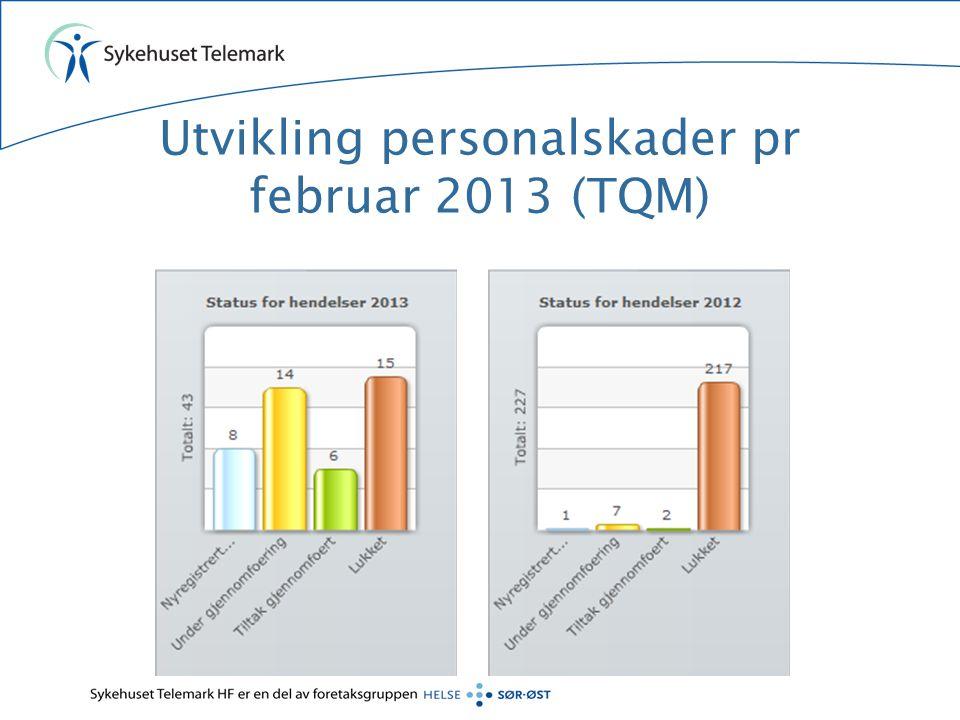 Utvikling personalskader pr februar 2013 (TQM)