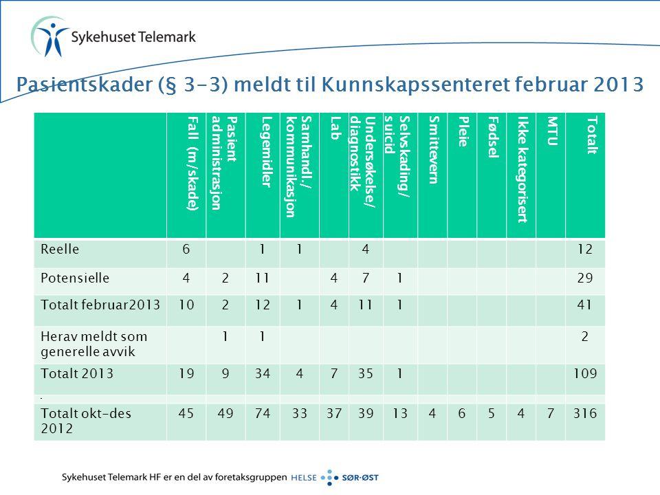 Pasientskader (§ 3-3) meldt til Kunnskapssenteret februar 2013