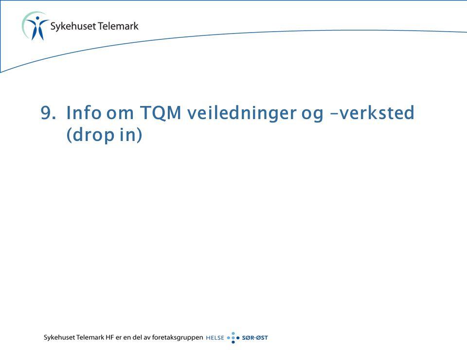 Info om TQM veiledninger og –verksted (drop in)
