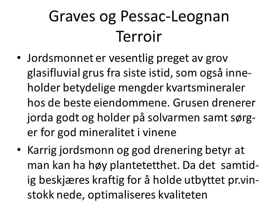 Graves og Pessac-Leognan Terroir