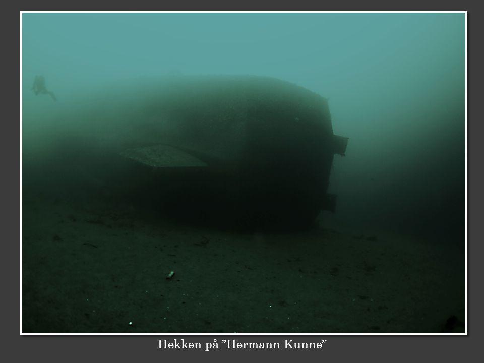 Hekken på Hermann Kunne