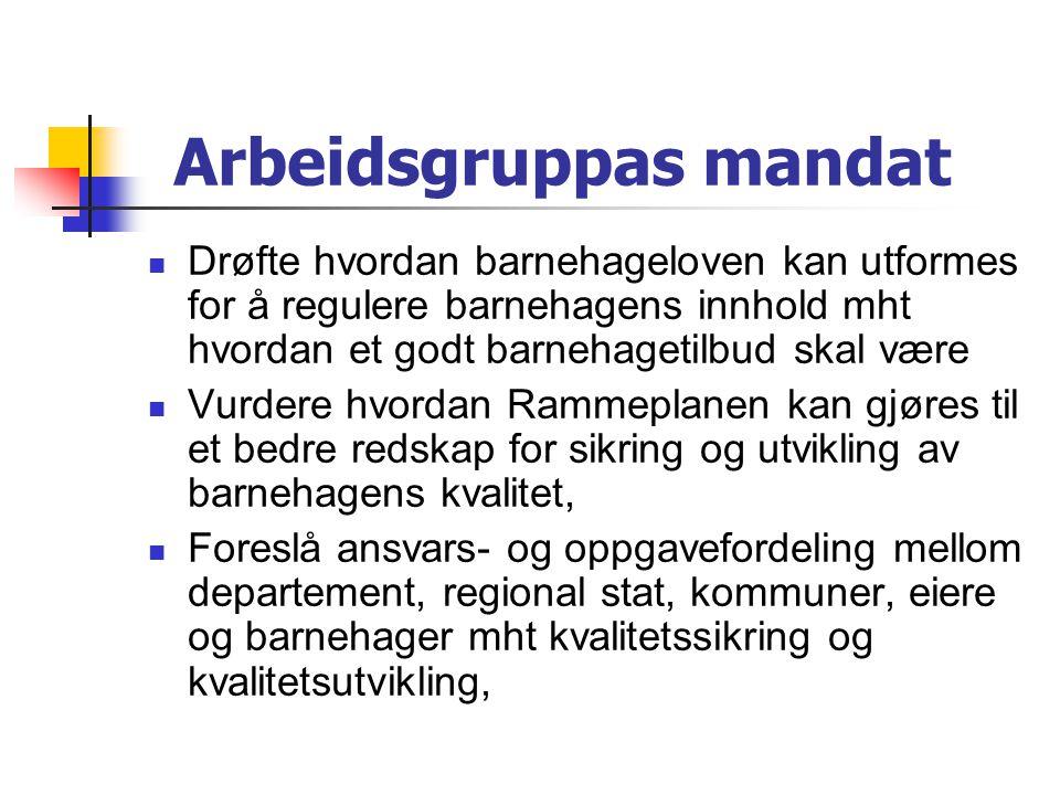 Arbeidsgruppas mandat