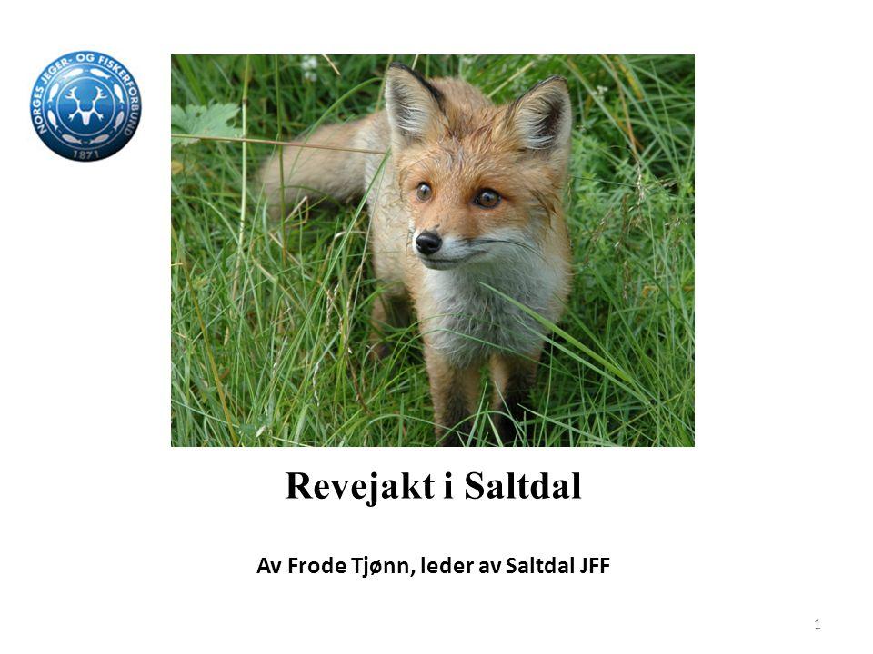 Av Frode Tjønn, leder av Saltdal JFF