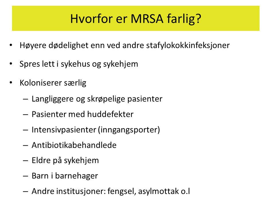 Hvorfor er MRSA farlig Høyere dødelighet enn ved andre stafylokokkinfeksjoner. Spres lett i sykehus og sykehjem.
