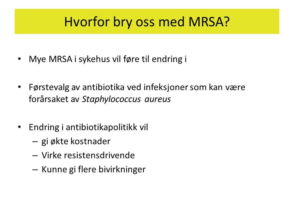 Hvorfor bry oss med MRSA
