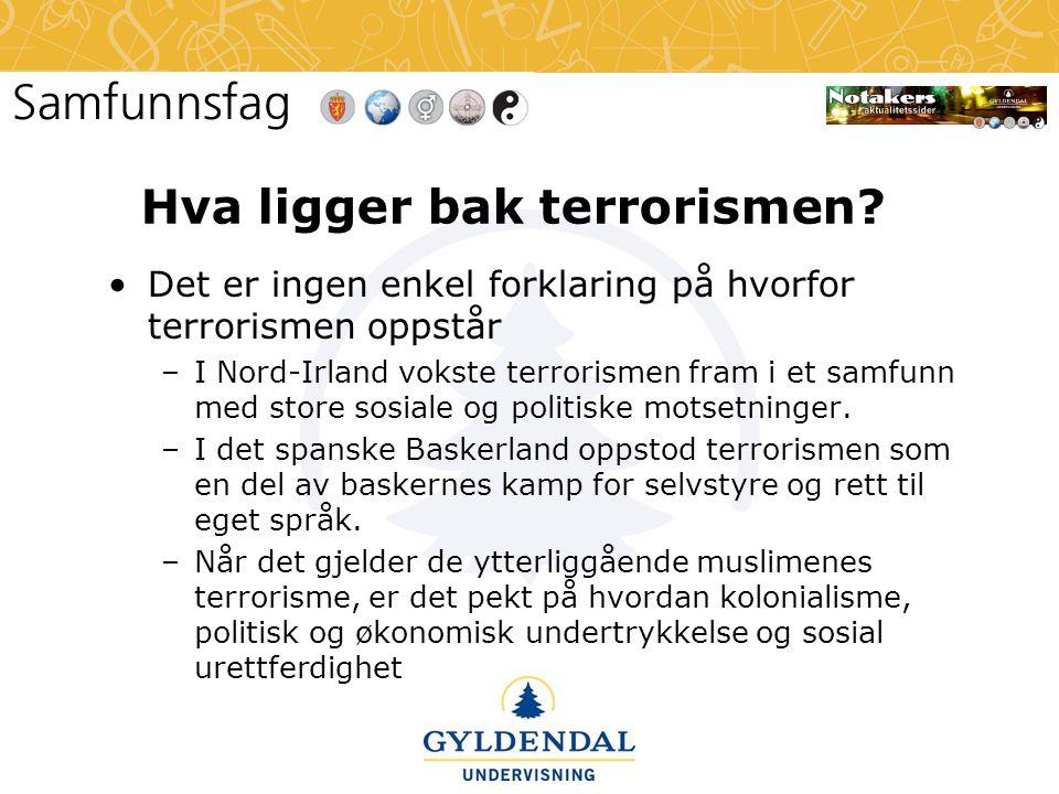Hva ligger bak terrorismen