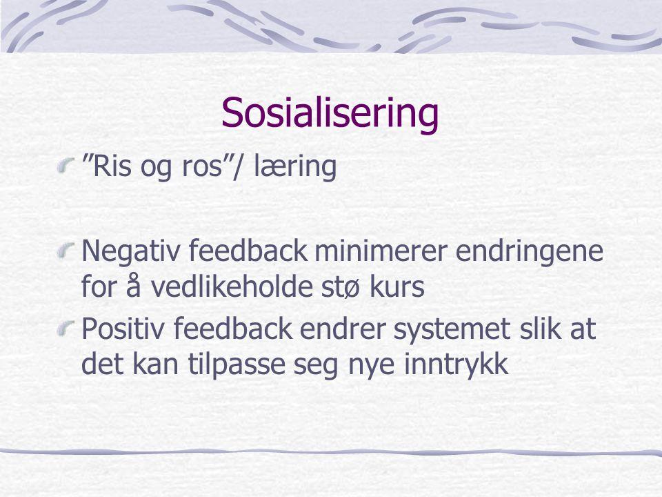 Sosialisering Ris og ros / læring