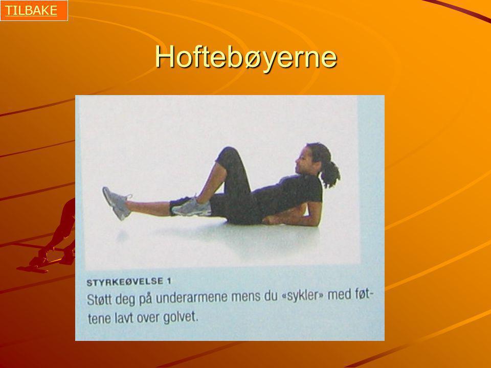 TILBAKE Hoftebøyerne