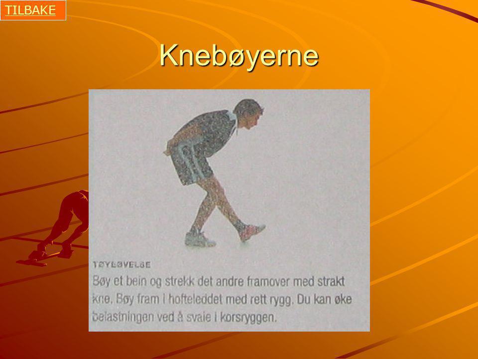 TILBAKE Knebøyerne