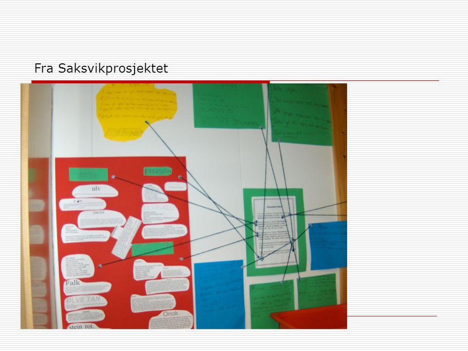 Fra Saksvikprosjektet