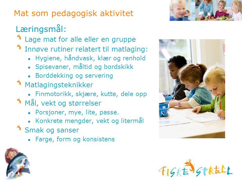Mat som pedagogisk aktivitet