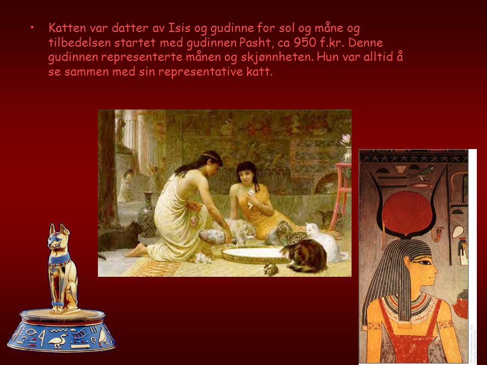 Katten var datter av Isis og gudinne for sol og måne og tilbedelsen startet med gudinnen Pasht, ca 950 f.kr.