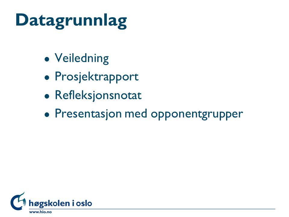 Datagrunnlag Veiledning Prosjektrapport Refleksjonsnotat