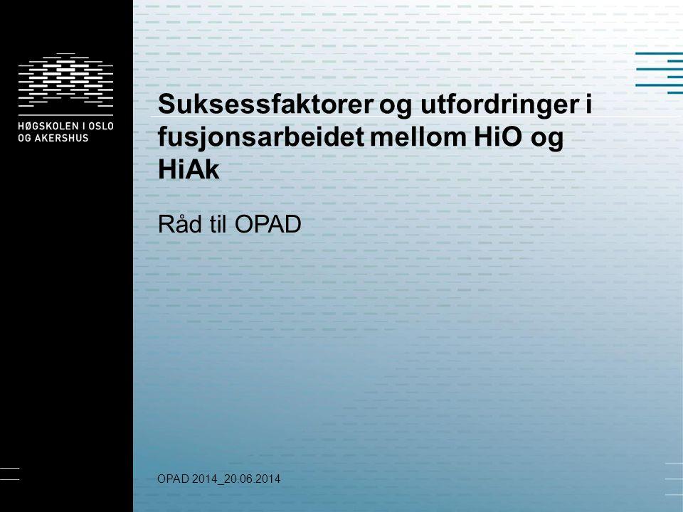 Suksessfaktorer og utfordringer i fusjonsarbeidet mellom HiO og HiAk