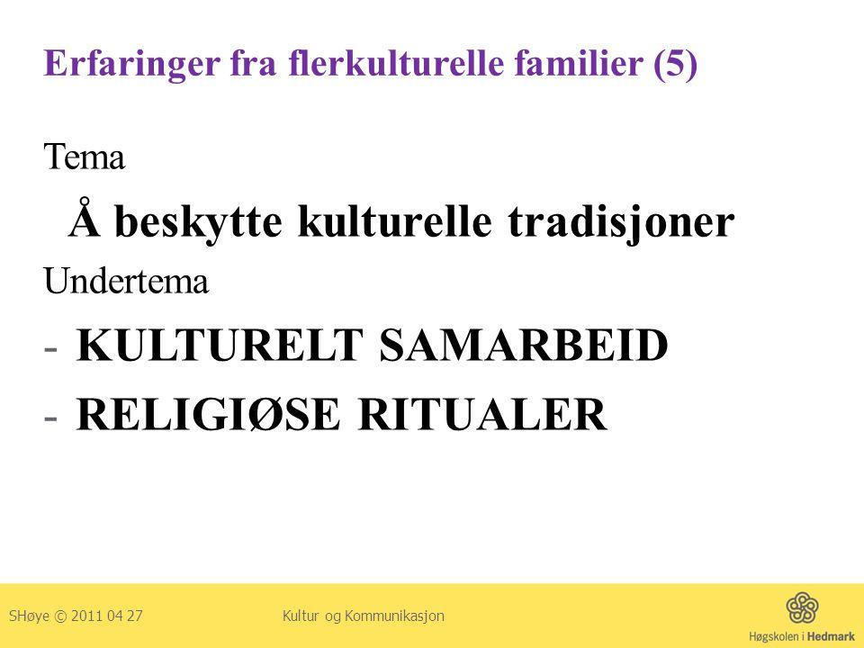 Erfaringer fra flerkulturelle familier (5)