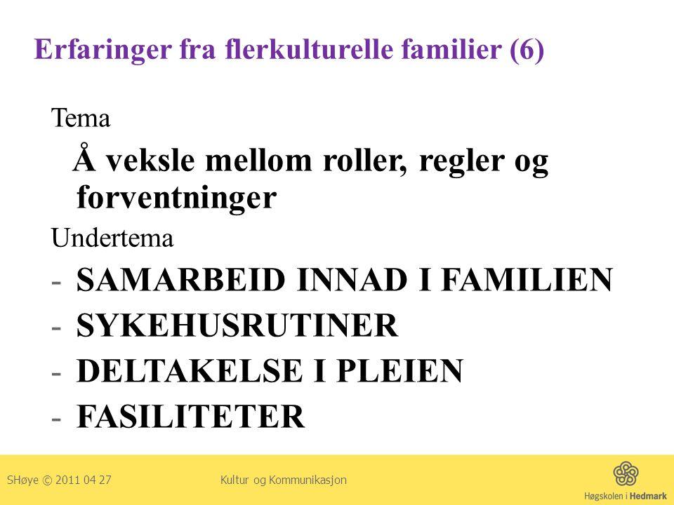 Erfaringer fra flerkulturelle familier (6)