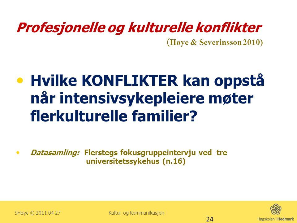 Profesjonelle og kulturelle konflikter (Høye & Severinsson 2010)