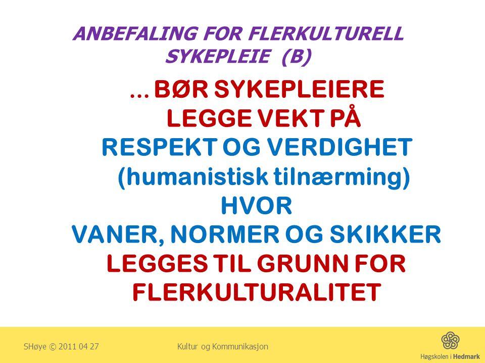 ANBEFALING FOR FLERKULTURELL SYKEPLEIE (B)